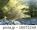 梓川 河川 自然の写真 16072248