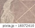 ナスカ 地上絵 ナスカの地上絵の写真 16072410