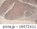 ナスカ 宇宙飛行士 地上絵の写真 16072411