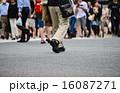 歩行者 足 歩くの写真 16087271