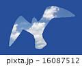 カモメのシルエット 16087512