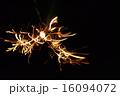 線香花火 16094072