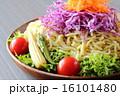 麺類 麺 ラーメンの写真 16101480
