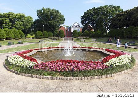 横浜 港の見える丘公園 沈床花壇 16101913