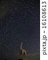 陣馬山の星 16108613