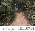 未舗装の小道 16115714