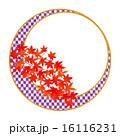 フレーム 紅葉 葉のイラスト 16116231
