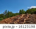 林業の丸太置場 16123198