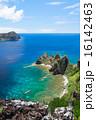 長崎展望台 父島 海の写真 16142463