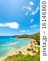 ハワイ 16146860