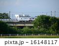 陸橋 乗り物 電車の写真 16148117