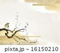 枝 梅 鳥のイラスト 16150210