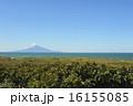 利尻富士 海 青空の写真 16155085