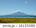 国立公園 利尻富士 日本百名山の写真 16155086