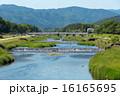 賀茂川 河川 川の写真 16165695