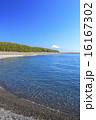 三保の松原からの駿河湾と富士山 16167302