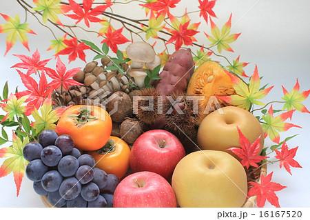 秋の野菜と秋の果物 16167520
