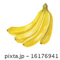 バナナ 16176941