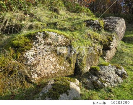 御在所岳 苔むした岩 / Mt.Gozaisho Mossy Rocks 16202290