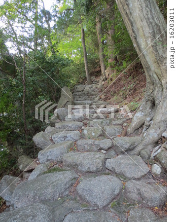 御在所岳 石畳の階段 / Mt.Gozaisho Stone Steps 16203011