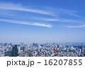 東京タワーとウォーターフロントを望む大都市風景 16207855