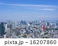 東京タワーとウォーターフロントを望む大都市風景 16207860