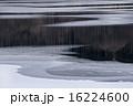 初冬の湖 16224600
