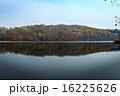 晩秋のポロト湖 16225626