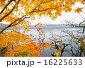 晩秋のポロト湖畔 16225633