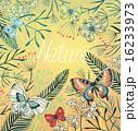 蝶 背景 フラワーのイラスト 16233973