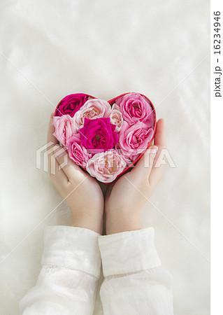 ハートの箱に入れられたバラの写真素材 [16234946] - PIXTA