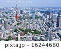 東京タワーとウォーターフロントを望む大都市風景 16244680