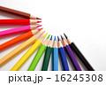 色鉛筆から無限の可能性 2 16245308