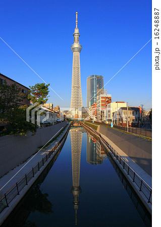 青空と川面に映る東京スカイツリー 16248887