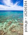 久高島 青い海 沖縄の写真 16266364