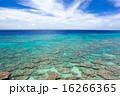 久高島 青い海 沖縄の写真 16266365