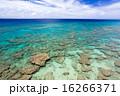 久高島 青い海 沖縄の写真 16266371