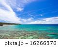 久高島 沖縄 青空の写真 16266376