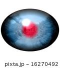 動物 網膜 目のイラスト 16270492