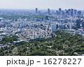 青山墓地~新宿副都心遠望 16278227