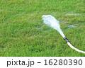 しぶき 緑 草の写真 16280390