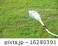しぶき 緑 草の写真 16280391
