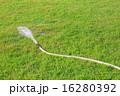 しぶき 緑 草の写真 16280392