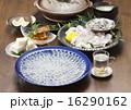 ふぐ鍋 ふぐちり 鍋料理の写真 16290162