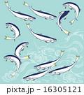 アユのイラストレーション 16305121