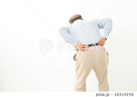 腰痛 シニア男性 16314258
