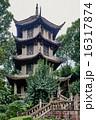 茅葺き 四川省 成都の写真 16317874