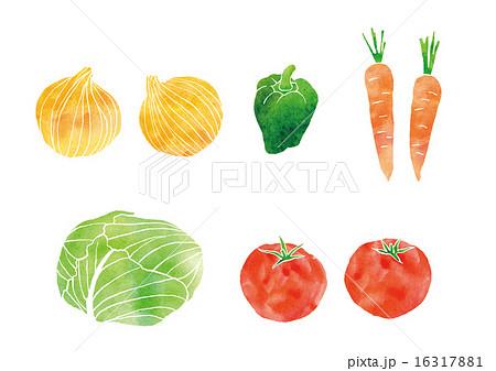 野菜のイラスト素材 16317881 Pixta