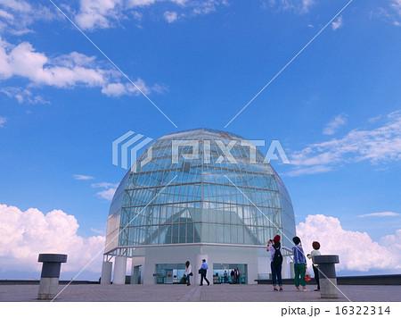 葛西臨海水族園 16322314