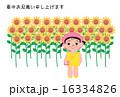 暑中見舞い ポストカード 子供のイラスト 16334826